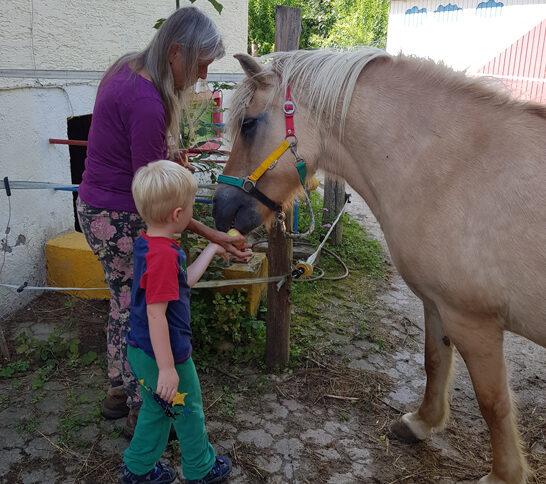 Sarah das Pferd aus den Kinderbüchern